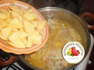 кладем картофель в щи капустные