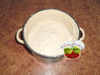 тесто для оладий без дрожжей