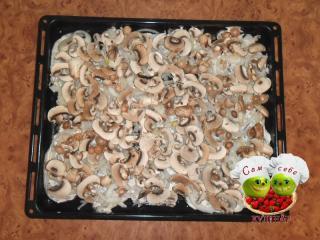 выложить слой грибов