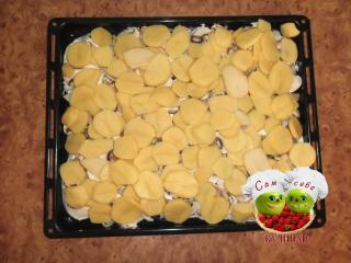 кладем на противень слой картошки