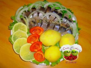 селедка с луком и картошкой на тарелке