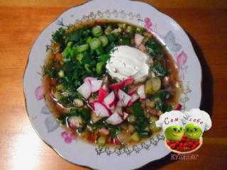 окрошка в тарелке зелень сметана
