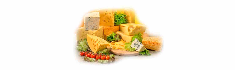 Сыр рецепты с фото